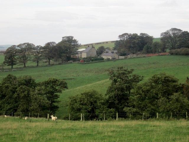 Looking across Lyham Dean towards South Lyham
