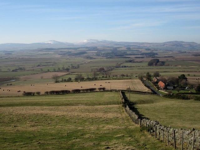 Grassland at South Lyham