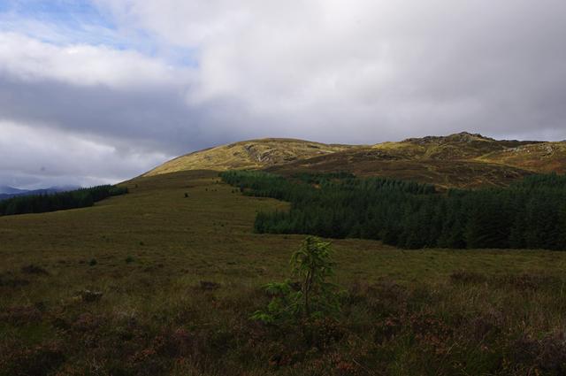 Moorland north of Milton