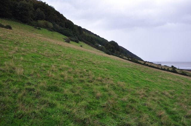 West Somerset : Grassy Hillside