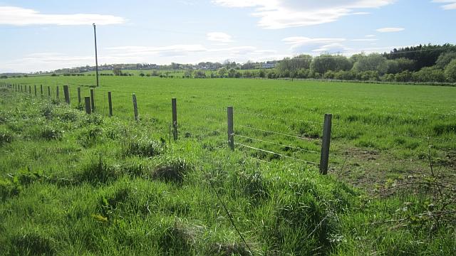 Grassland, Bogend