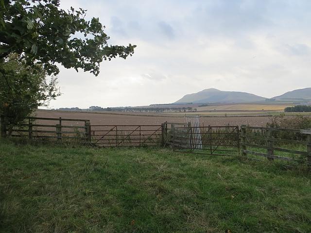 Fields near Muirage