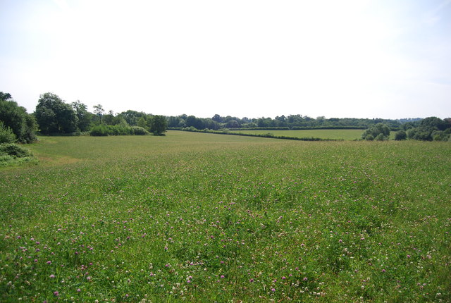 Farmland in the Medway Valley