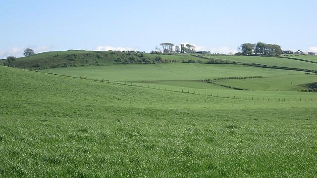 Grassland, Craigie