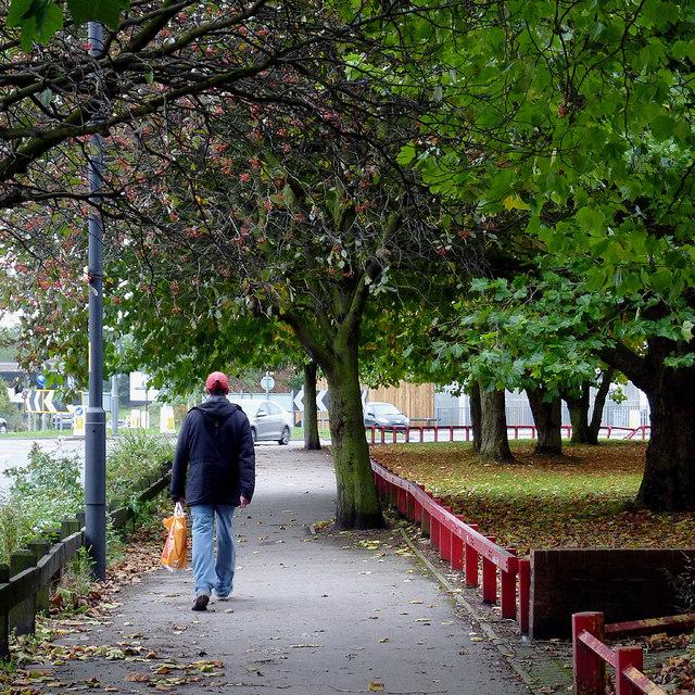 Leafy sidewalk in Willenhall, Walsall