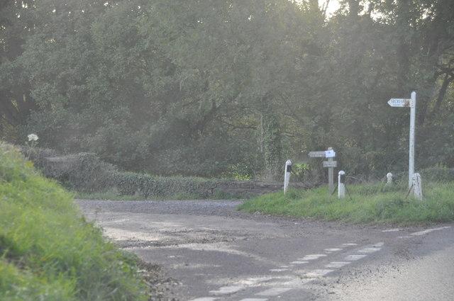 West Somerset : Track to Bickham Farm