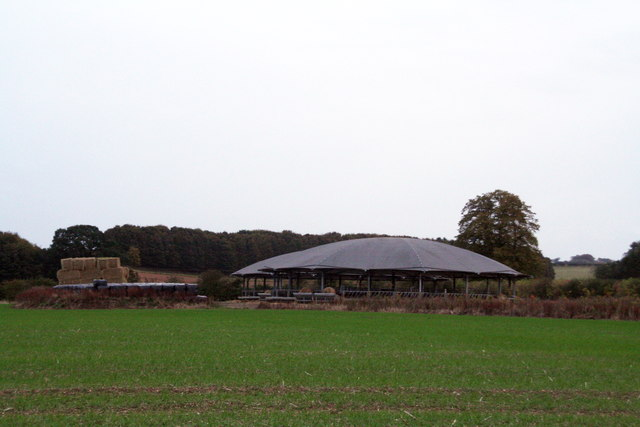 Cattle Pens behind Manor Farm