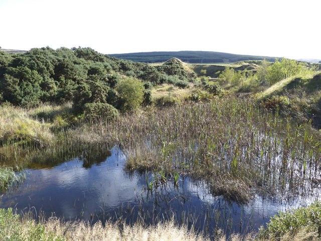 Pond near Glenquicken