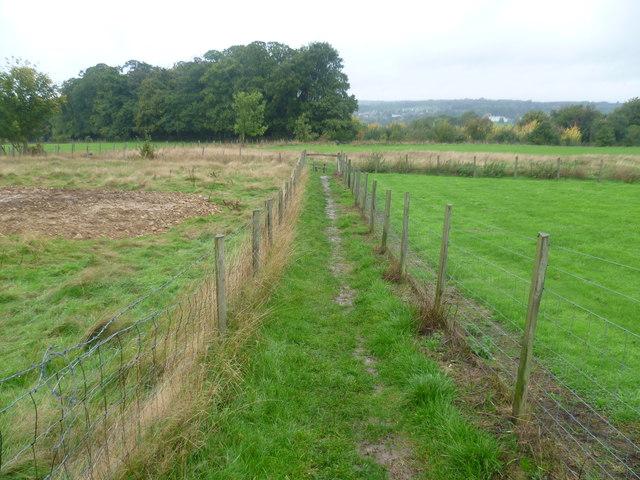 Path near Farleigh Green