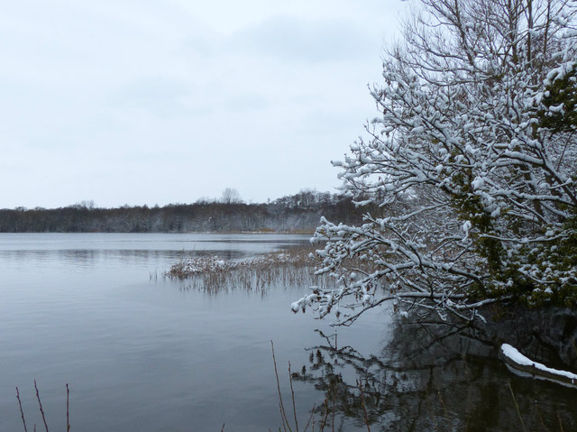 A cold and snowy Groby Pool