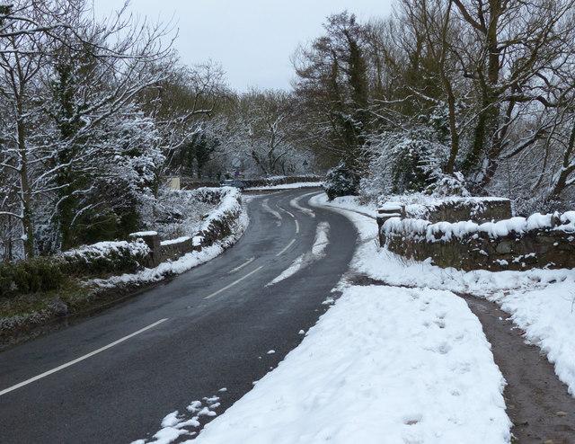 Newton Lindford Lane towards Groby