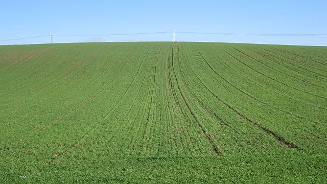 Arable land, Barwheys