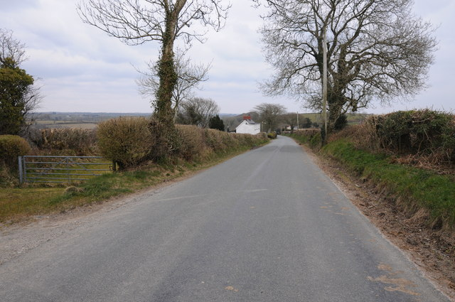 Country road near Cockold