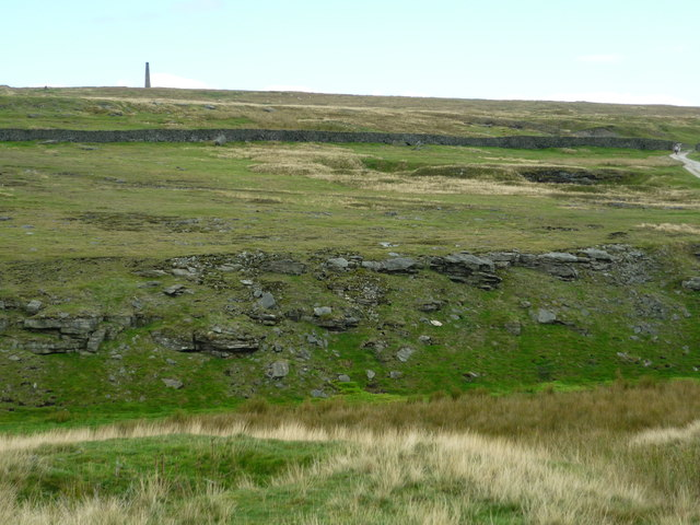 New Pasture Beck
