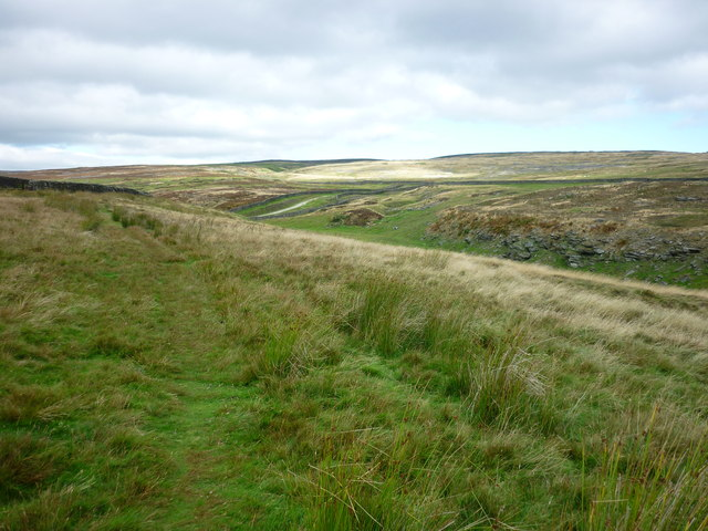 Burrows Pasture