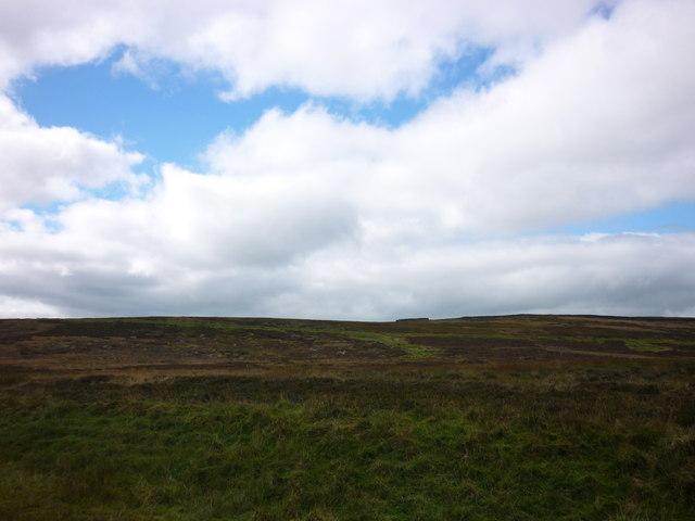 Sheepfold, Yarnbury