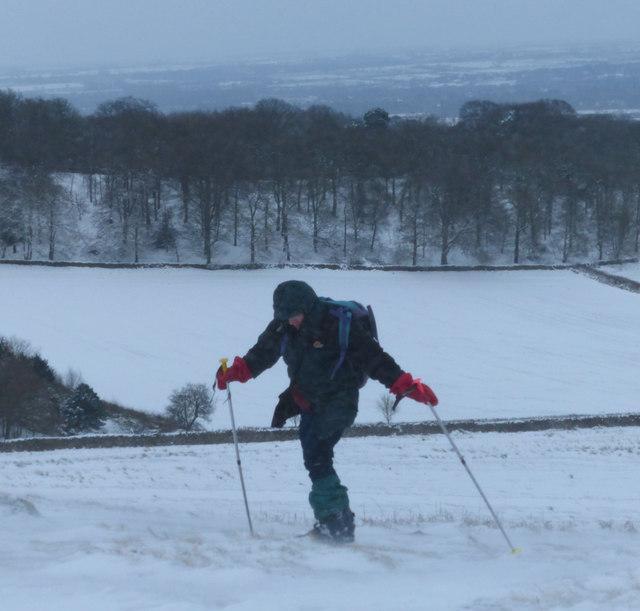 Skier at Bradgate Park