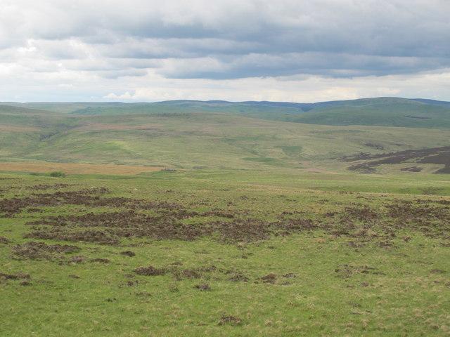 Moorland southeast of Wilkwood East