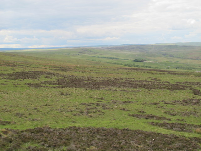 Moorland east of Coal Cleugh