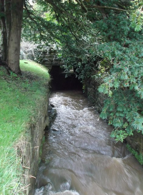 Furness Abbey - Mill Beck enters the site
