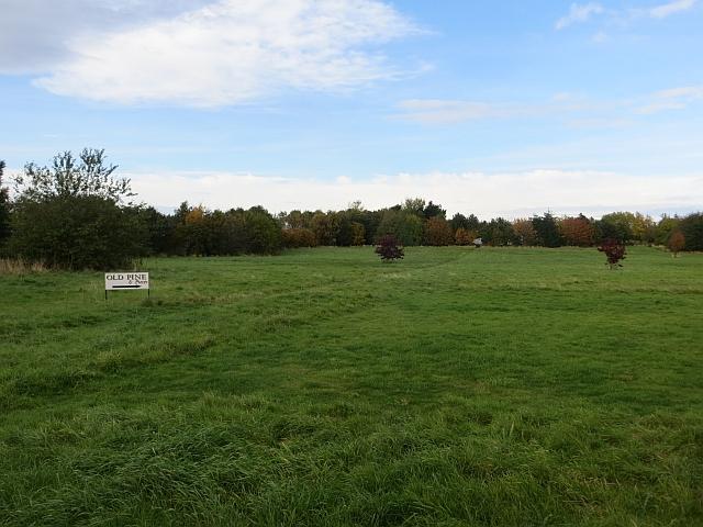 Open area, Fenton Barns