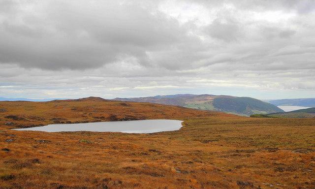Loch Dubh, Balmacaan Forest