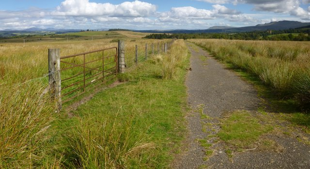 Track across Cameron Muir