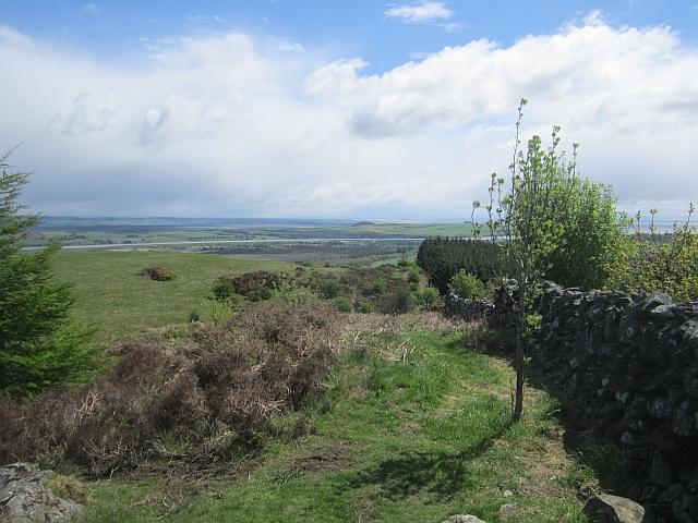 Butterhole Hill