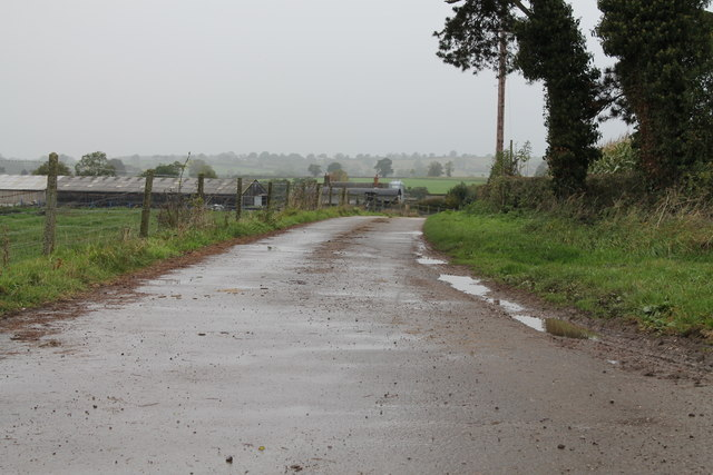 Road to Gorsty Fields