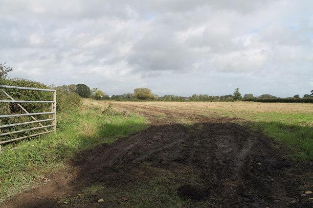 Field entrance at Holly Bank Farm