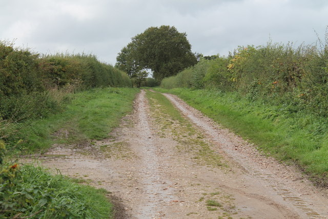 Restricted Byway near Bartonfields
