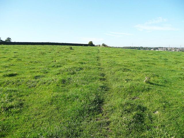 Elland FP58 crossing a field