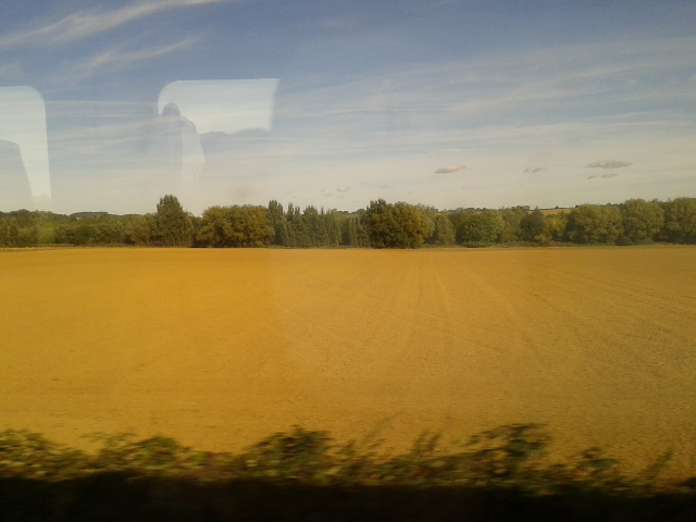 Field seen from the train
