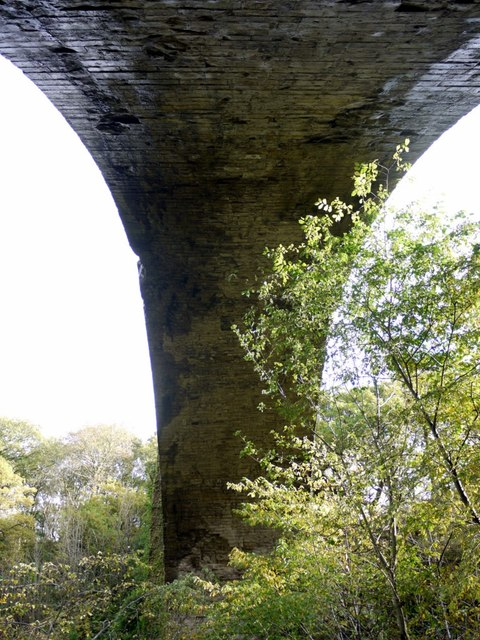 Causey Arch (from below)