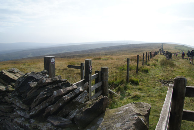 Ridgetop path junction