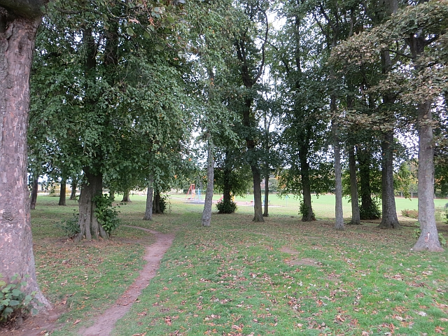 Trees in the park, Rosewell