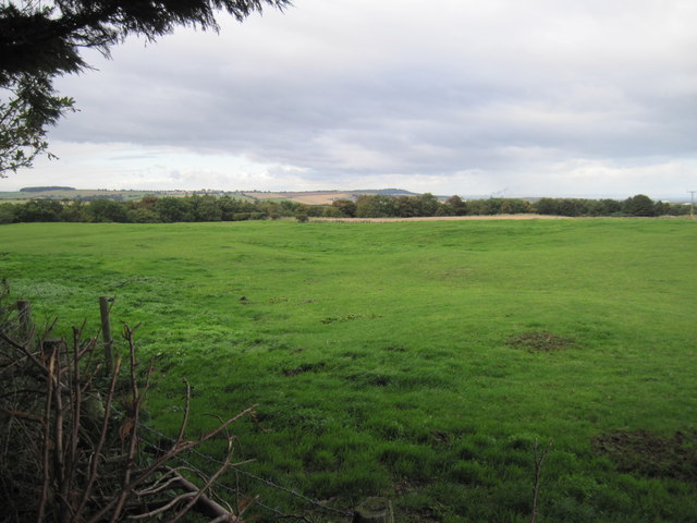 Site  of  the  Medieval  Settlement  at  Kilton  Thorpe