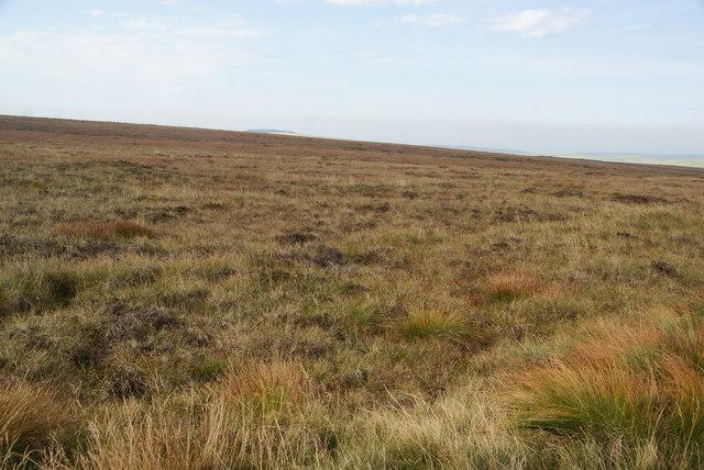Smooth moorland on Whetstone Ridge