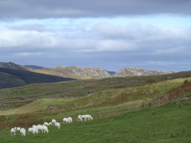 The  Clints of Dromore from Pibble