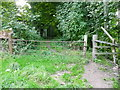 SE0820 : Stile and gate on apparently permitted path by Humphrey Bolton
