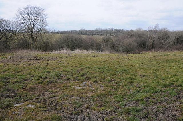 Farmland at Whitehook