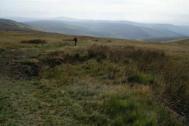 Path to Cumberland Brook