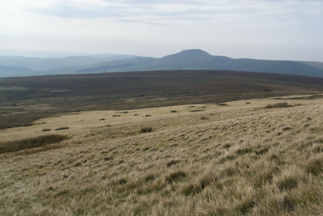 Moorland above Danethorn Hollow