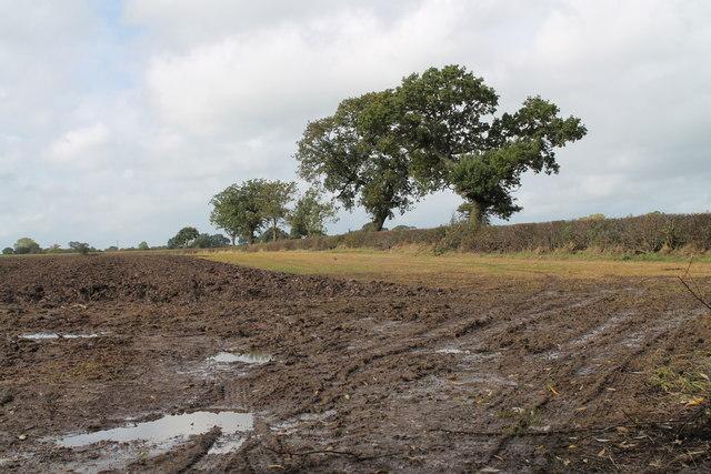 Muddy Field off Aston Lane