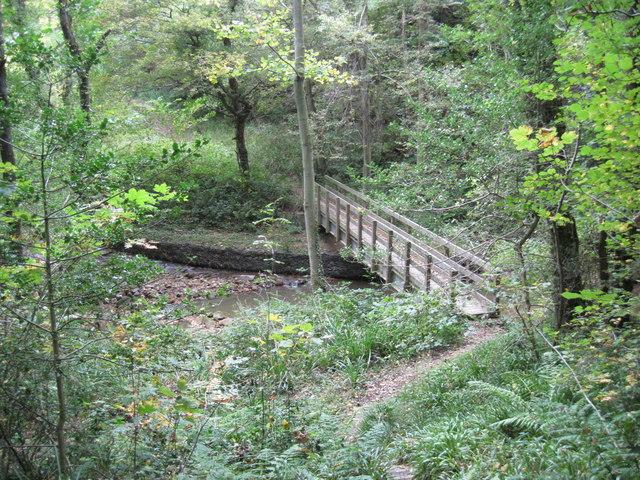 Footbridge  over  Beck  in  Woods