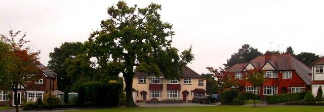 Rectory Gardens, SW corner