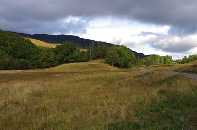 Marshy land east of Loch Achray