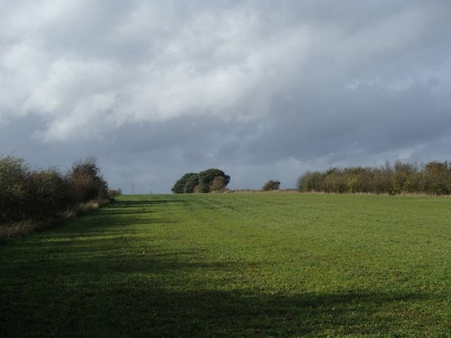 Field west of the reserves