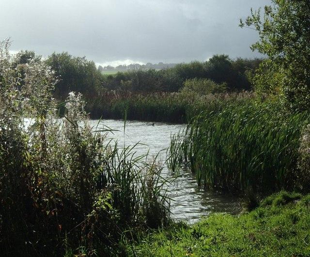 Lake corner at Carr Vale reserve