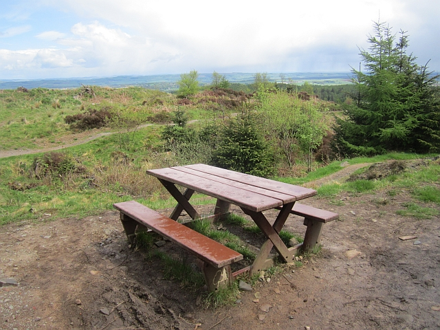 Picnic table, Mabie Forest